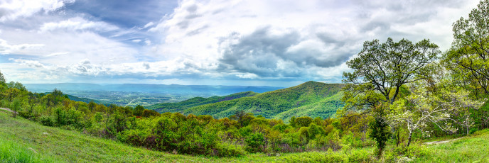 Shenandoah Mountain Outlook